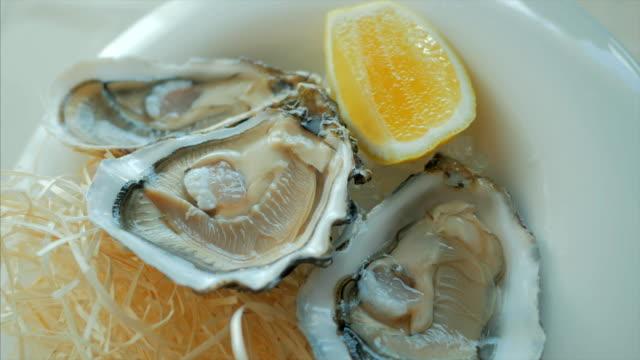 Primer plano de ostras con limón en un hielo que hace girar la placa - vídeo