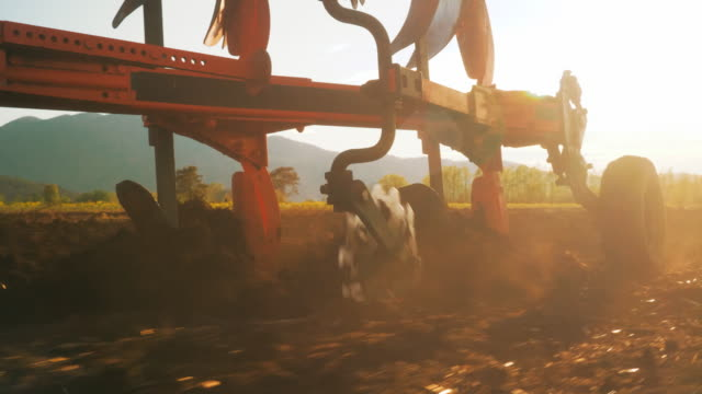 Close-up of Plow Turning Over Soil in Sunset Light Close-up tracking shot of plow turning over soil in amazing sunset light. plow stock videos & royalty-free footage