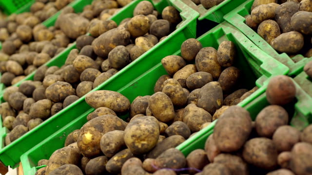 Close-up of potatoes in boxes on the counter in Potatoes in basket for sale at supermarket. Close-up of potatoes vegetables in the crate in the supermarket. Pile of potatoes in plastic boxes on market counter. prepared potato stock videos & royalty-free footage