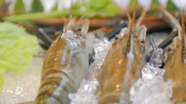 Close-up of River Prawn and Fresh seafood on Ice , Panning shot , 4k(UHD) video