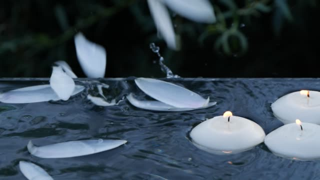 Close-up of small burning candles and lotus flower petals falling down into water