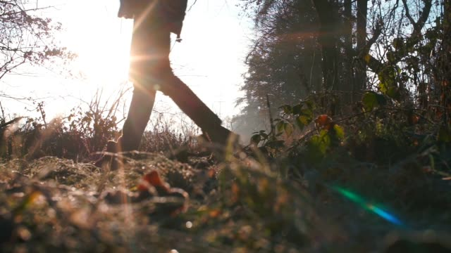 vídeos de stock e filmes b-roll de close-up of the legs of a man walking in the forest of a city city park. - passagem de ano