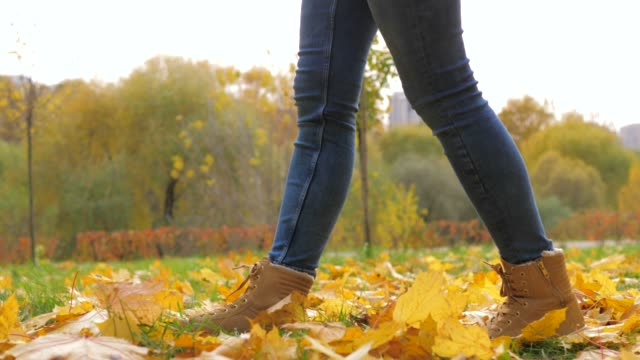 Closeup Of Woman Legs In Boots Walking In A Park With Yellow Fallen Leaves video