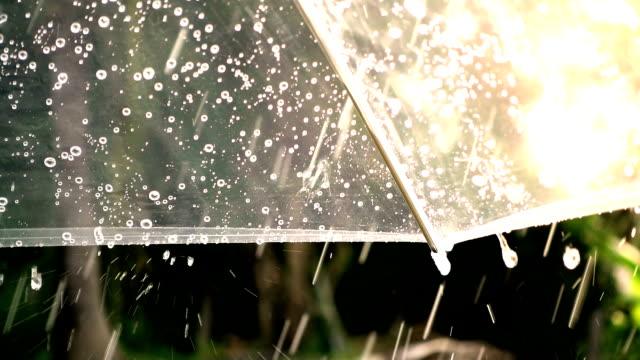 close-up auf regenschirm mit regen fällt in zeitlupe erschossen - sonnenschirm stock-videos und b-roll-filmmaterial