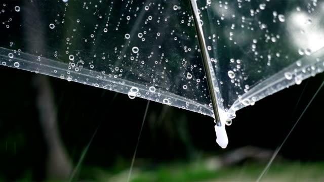 close-up auf regenschirm mit regen in den park außerhalb - sonnenschirm stock-videos und b-roll-filmmaterial