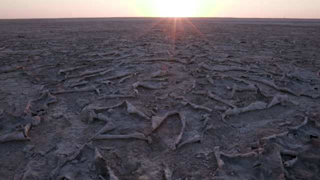 Close-up panning view of large areas of dry cracked mud highlighted by the setting sun Close-up panning view of large areas of dry cracked mud highlighted by the setting sun,Botswana salt flat stock videos & royalty-free footage
