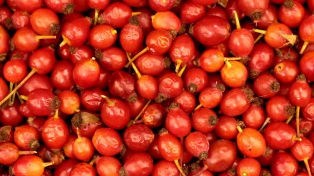 クローズ アップ。新鮮な収穫ローズヒップの果実の回転 - イヌバラ点の映像素材/bロール