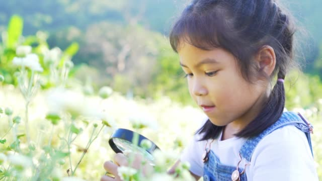Close-up shot of beauty girl using magnifying glass in floral field
