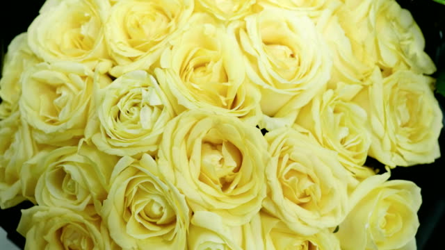 Close-up shot of large bouquet of bright fresh yellow roses in a flower shop. 4K Close-up shot of flowering plants are being prepared for flower arranging in bouquets. 4K bunch stock videos & royalty-free footage