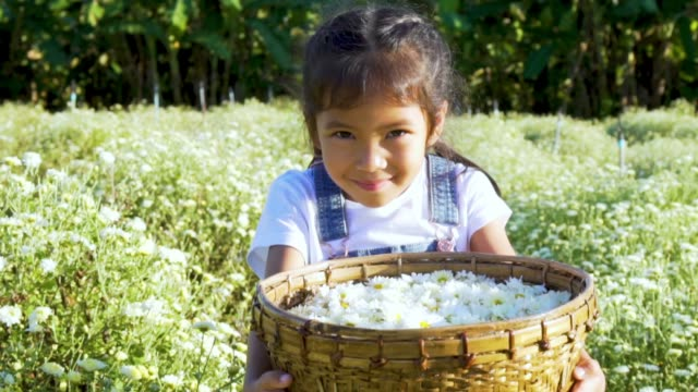 close-up shot of lovely girl holding a flower basket in floral field - cestino video stock e b–roll