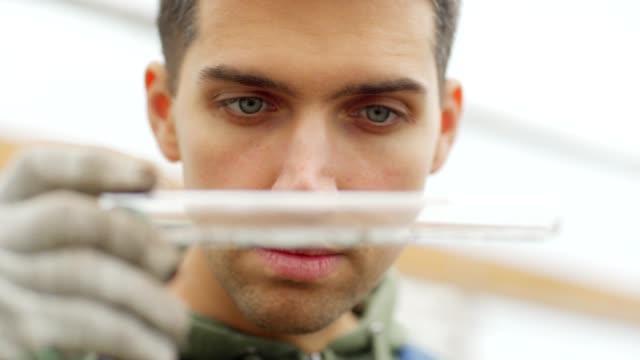 nahaufnahme von jungen männlichen qualitätskontrolle experte halten reagenzglas und prüfung sorgfältig bodenprobe in kommerziellen gewächshaus - gewächshäuser stock-videos und b-roll-filmmaterial