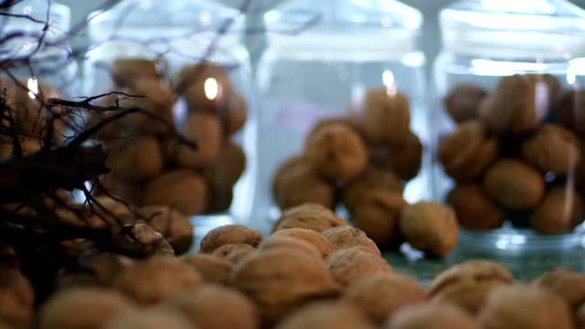 close-up, stored in glass jars are seeds, walnuts, various species grown on breeding, hybrids of nuts,