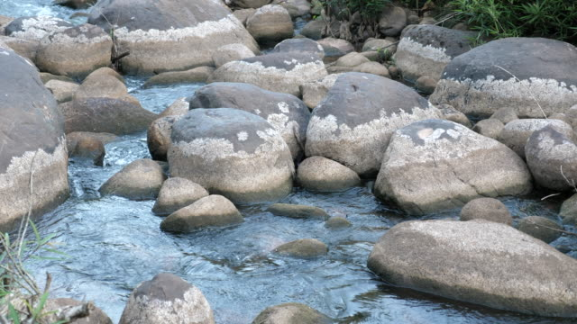 Photo of Close-up Tranquil Flow of River with Rock