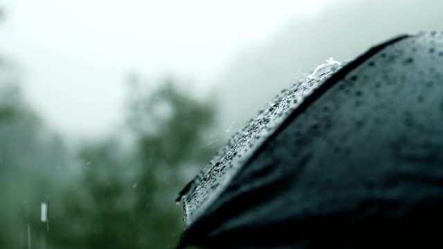 vídeos de stock e filmes b-roll de close-up umbrella with raining - guarda chuva