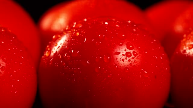 Close-up view of red ripe tomatoes with water drops.