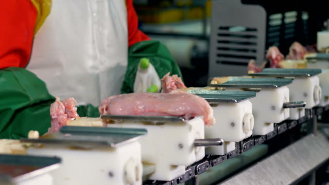 A close-up view on moving trays with chicken fillet. video