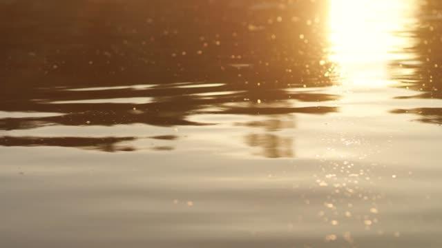 altın suyun güzel pürüzsüz huzurlu yüzeyinin yakın çekim video görüntüleri - bling bling stok videoları ve detay görüntü çekimi