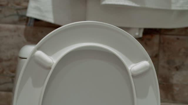closing the toilet lid. - coperchio video stock e b–roll