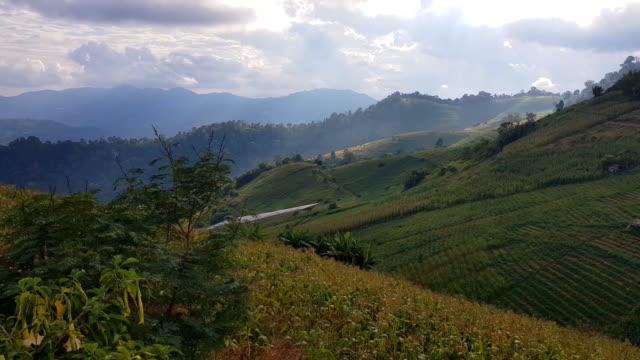 雲と霧と山の風景、Monjam 山、チェンマイ、タイ ビデオ