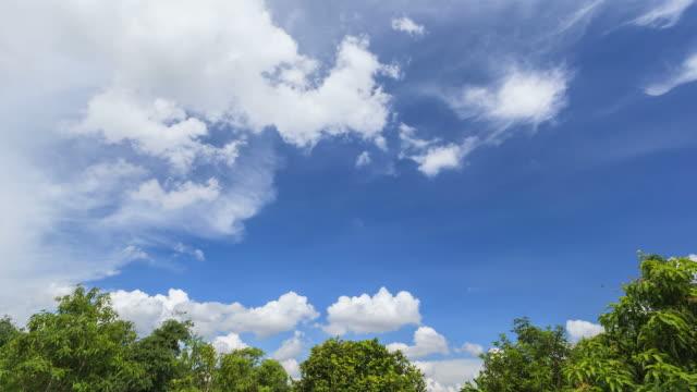 vídeos de stock, filmes e b-roll de lapso de tempo em movimento e o azul do céu nuvem - cirro