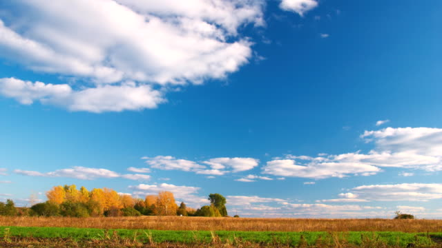 Clouds flying on blue sky over autumn forest and field video