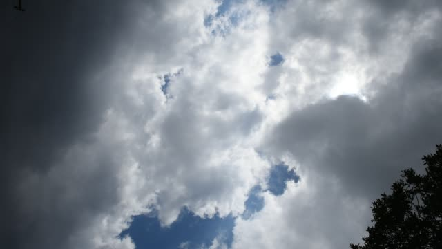 clouds in day sky with tree video