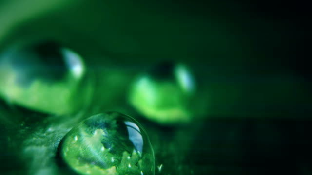 vídeos de stock e filmes b-roll de clouds reflected in water drops, cinemagraph - macro