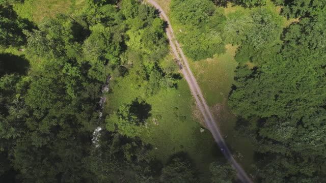 ombre delle nuvole che si muovono sulla terra. la vista aerea dei droni sulla foresta nei monti pocono nella giornata di sole estivo. - monti appalachi video stock e b–roll