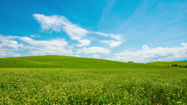 T/L 8K Cloudscape over beautiful green meadow video