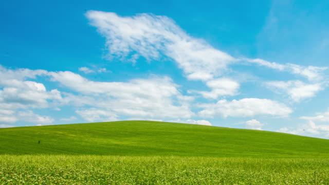 T/L 8K Cloudscape over beautiful meadow