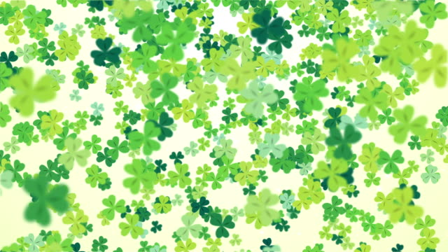 Clover leaf St Patrick's day background looped video