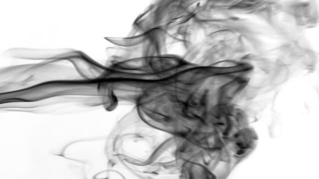 Clubs of black smoke pulsing on a white background. Beautifully video