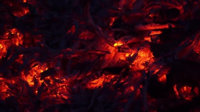 coals in the fire close up - tizzone video stock e b–roll
