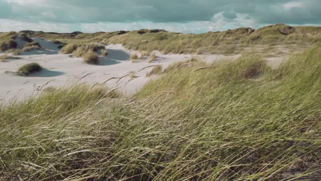 Coast Landscape Island of Sylt Coast Landscape Island of Sylt, Schleswig-Holstein, Germany coastal feature stock videos & royalty-free footage