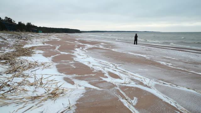 vídeos de stock, filmes e b-roll de litoral do mar báltico, praia de inverno paisagem com uma caminhada de pessoa - países bálticos