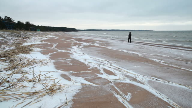 Coast of Baltic sea, winter beach landscape with walking person Coast of Baltic sea, winter beach landscape with walking person baltic countries stock videos & royalty-free footage