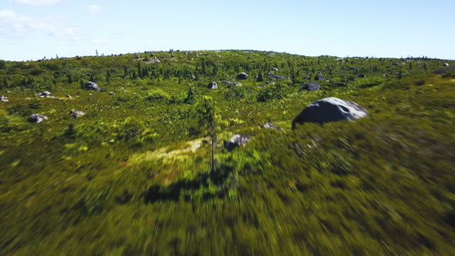Coastal Barrens Aerial drone view of a small portion of the Peggy's Cove Preservation area. quadcopter stock videos & royalty-free footage