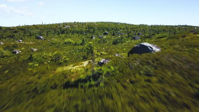 沿岸の不毛 - マルチコプター点の映像素材/bロール