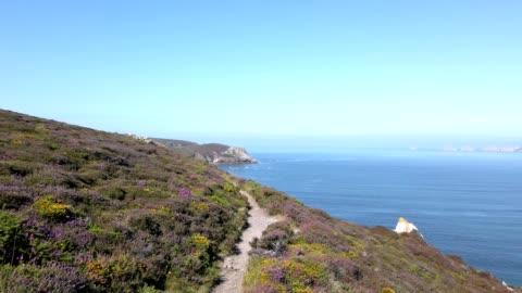 paesaggio costiero in bretagna, francia in estate - costa caratteristica costiera video stock e b–roll