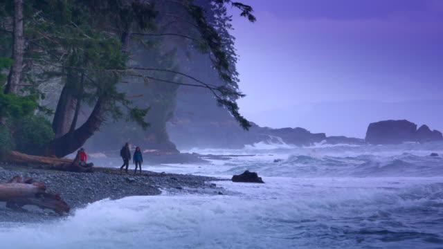 coastal sturm, pazifische nordwestküste wellen am strand, wind und wolken - britisch kolumbien stock-videos und b-roll-filmmaterial