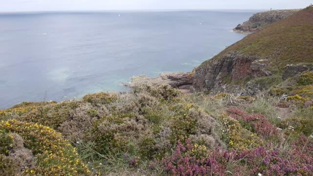 Coastline landscape in Brittany video