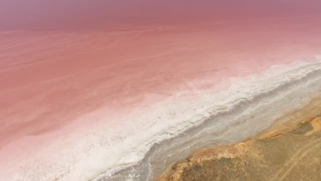 AERIAL: Coastline of red salt lake Red salt lake with therapeutic mud, aerial video, drone point of view salt flat stock videos & royalty-free footage