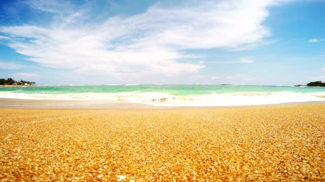 coastline Sri Lanka, beach, sand and the Indian Ocean video