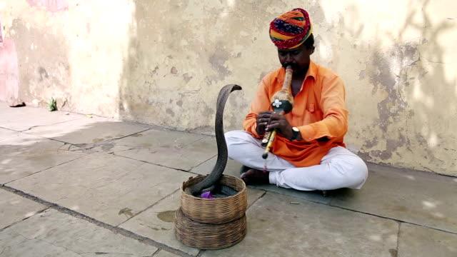 Cobra enchanter, snake charming Cobra enchanter sitting in the street charming his snake charming stock videos & royalty-free footage