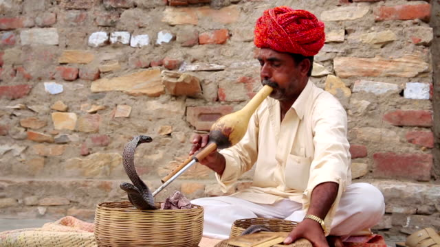 Cobra enchanter, snake charming Cobra enchanter sitting in the street with his cobra charming stock videos & royalty-free footage