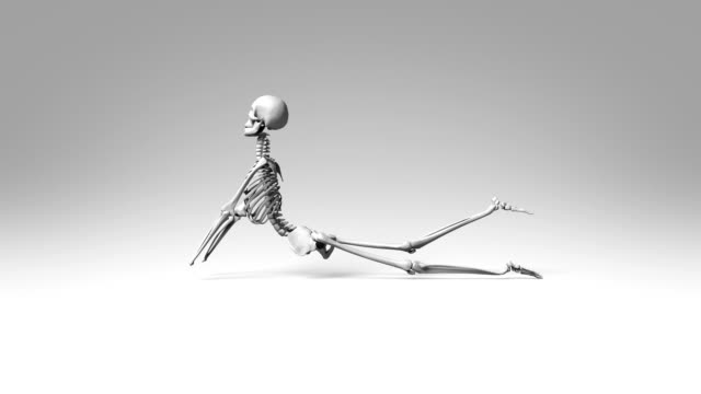Cobra Pose Of Human Skeletal video