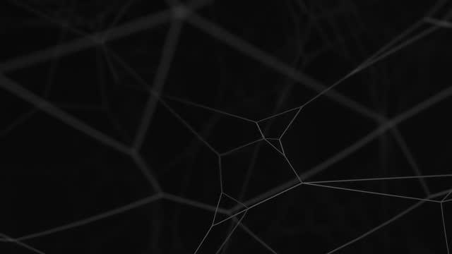 ragnatela 4k o erba di ragno isolata su sfondo nero. tecnologia astratta fantasy in plexus e sfondo di movimento. linee animate e profondità delle impostazioni dei campi. animazione 3d - elemento del design video stock e b–roll