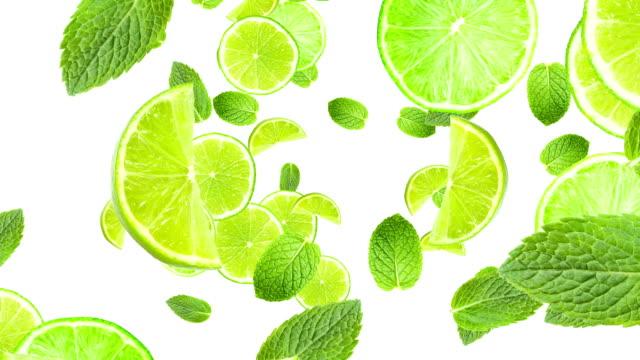 Cocktail citrus theme animation video