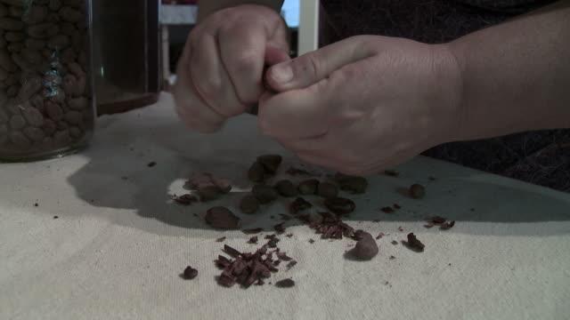 chicchi di cacao canditi e cioccolato - theobroma video stock e b–roll
