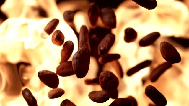 vídeos de stock e filmes b-roll de cocoa beans roasting on flames. super slow motion - cacau em pó